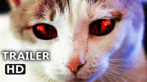 Hell's Kitty Trailer (2018) Cat, Comedy Movie Youtube