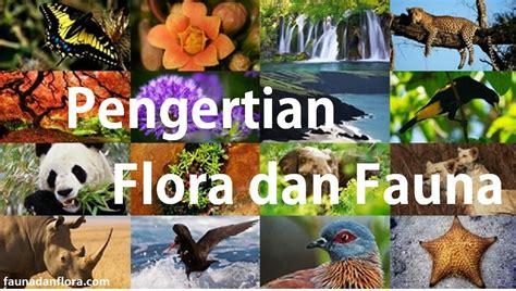 pengertian  penyebaran flora  fauna  indonesia