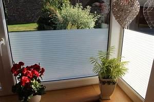 Folien Für Fenster Sichtschutz : 6 57 m fenster folie uv sichtschuz blendschutz blickdichte fenster folien ebay ~ Eleganceandgraceweddings.com Haus und Dekorationen