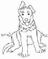 Shepherd German Coloring Puppy sketch template