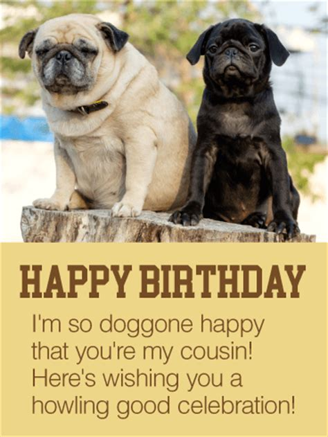 happy      cousin happy birthday card