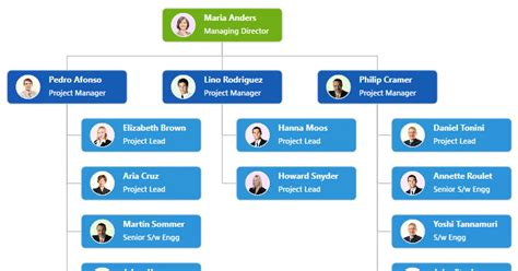 essential studio  wpf adds organizational chart