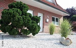 Wege Im Garten Anlegen : g rten und wege richtig anlegen mit splitt und kies ~ Buech-reservation.com Haus und Dekorationen