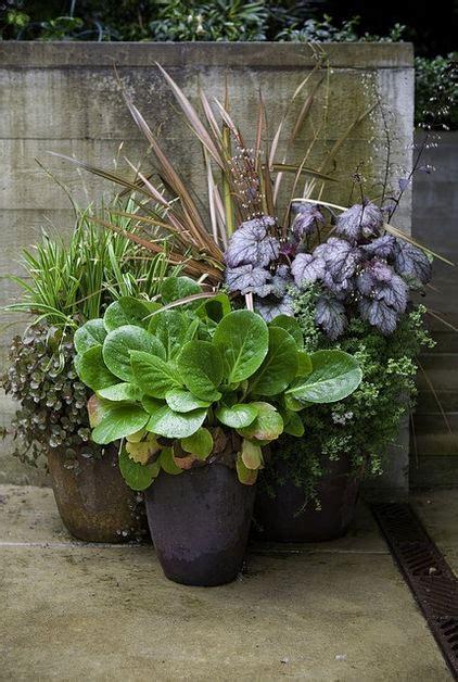 Secret Formula  Grouping Plants   Pot