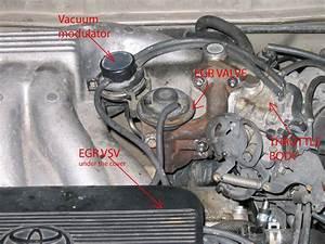 Toyota Avalon 3 0 1999