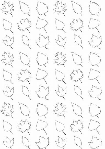 Leaves Printable Coloring Paper Pattern A4 Wrapping