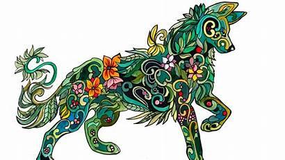 Coloring Adult Wolf Books Mandala Cry Adults