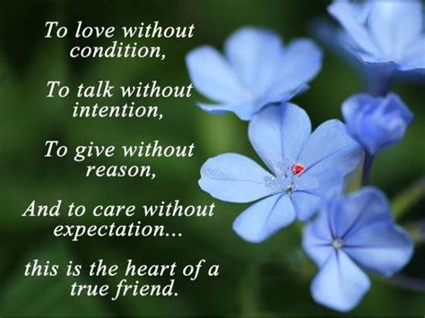 special friend quotes inspirational quotes about a special friend quotesgram