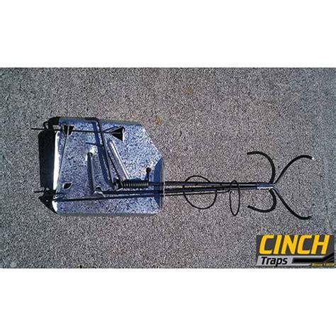 cinch mole traps cinch traps mole trap 2206