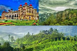 Munnar vacation tour best honeymoon places in kerala for Places to honeymoon in the us