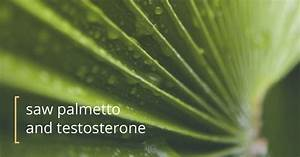 Does Saw Palmetto Affect Testosterone