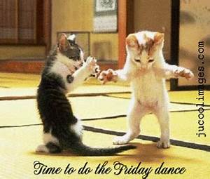 Party Cat Dancing GIF - Find & Share on GIPHY