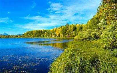 Desktop Summer Landscape Forest Lake Wallpapers Grass