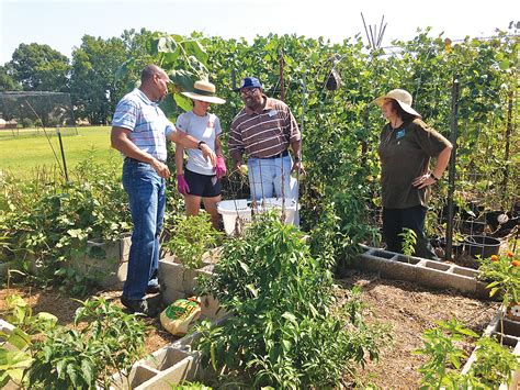 how to become a master gardener be a master gardener tennessee alumnus magazine