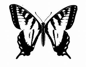 Ausmalbilder, Schmetterling, Pdf