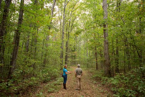 Land Secured for VA's Newest State Forest Along Roanoke ...