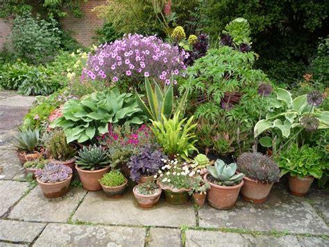 flower pot arrangement  great dixter england garden