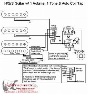 Jackson Performer Wiring Diagram