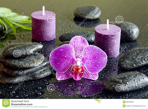 Purple Orchid Candles And Zen Stones Spa Concept Stock