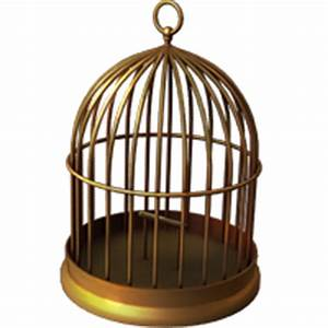 Photoscape Editor: Birds Cage Pngs