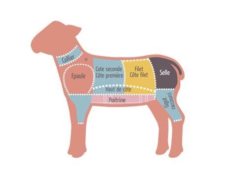 cuisiner le collier d agneau les morceaux dans le mouton et mode de cuisson mkvh
