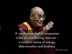 A mind committed to compassion is like a overflowing ...