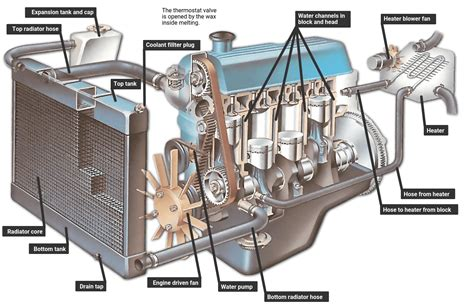 Diagram System Vehicle Cooling by How An Engine Cooling System Works How A Car Works