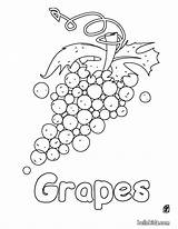 Coloring Pages Grapes Fruits Fruit Wine Labels sketch template