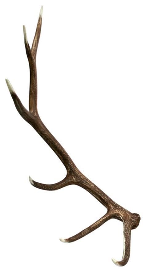 moose shed antler forums faux elk shed antler right rustic home decor by
