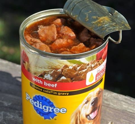 healthy nutrition      canned dog food