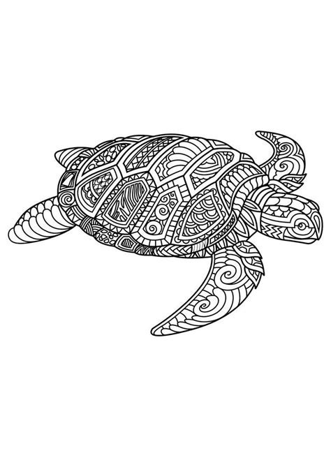 image result   mandala coloring page   lizard  crocodile turtle coloring pages