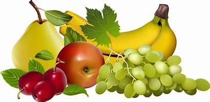 Fruit Fruits Clipart Transparent Clip Cliparts Some