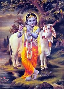 Diwali Greetings: Lord Krishna  Krishna