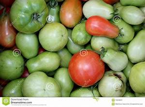 Red And Green Tomatoes Stock Image - Image: 10948501
