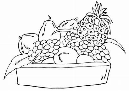 Fruit Coloring Bowl Pages