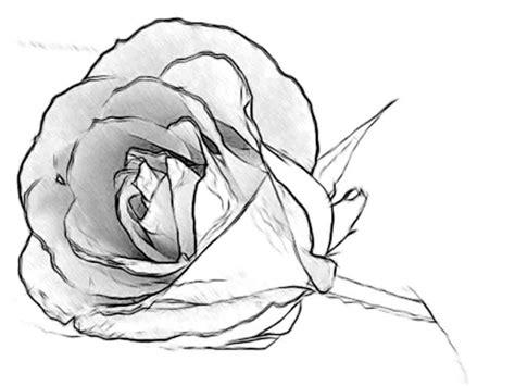 disegni facili ma belli 3d disegni bellissimi ma facili da disegnare
