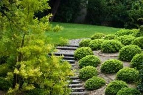 how to landscape a slope how to landscape a slope in backyard izvipi com