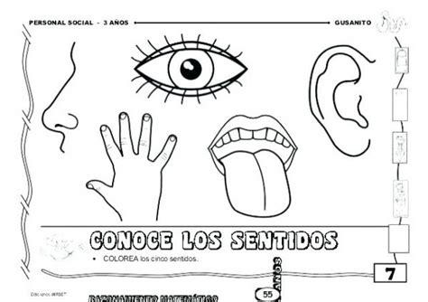 Dibujos para colorear 5 sentidos