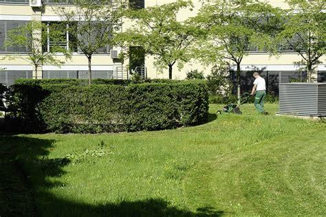 Gehalt Vorarbeiter Garten Landschaftsbau by Vorarbeiter M W D In Der Gr 252 Nfl 228 Chenpflege Immo Herbst