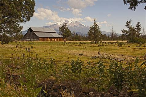 shasta valley rural landscape photograph by mick anderson