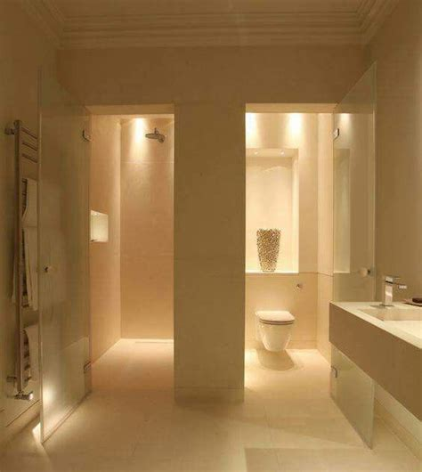 Bathroom Layout With Separate Toilet by Teresa Frosted Glass Door That Swings Open For Master