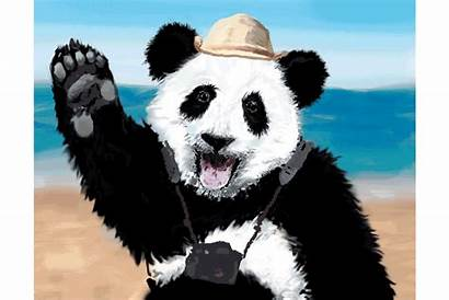 Panda Thank Vacation Tourist Illustration Behance Canvas