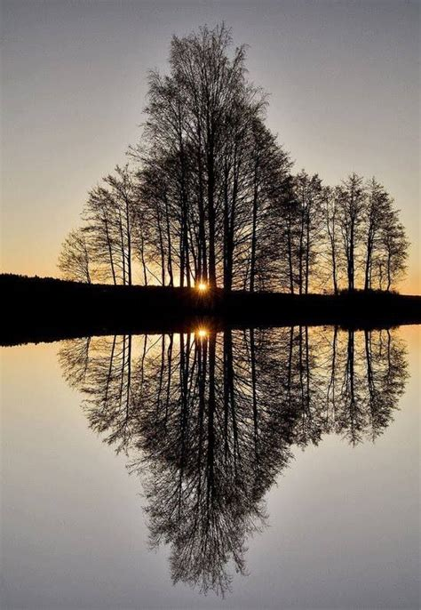 17 Best Images About A Mirrored Reflection On Pinterest