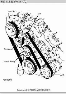 Need Diagram Serpentine Belt Has Slipped Off
