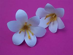 Blumen Basteln Vorlage : blumen aus papier basteln lilie bastelfrau ~ Frokenaadalensverden.com Haus und Dekorationen