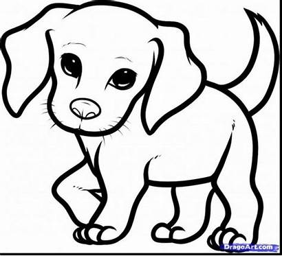 Coloring Puppy Dog Printable