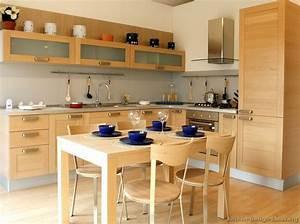 Modern Wood Kitchen Cabinets - modern kitchen designs