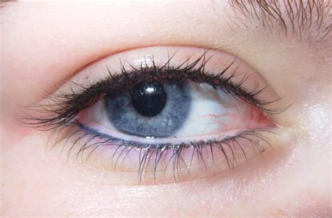 lash enhancement permanent makeup mugeek vidalondon