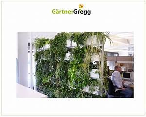 Hydrokultur Shop Online : g rtner gregg hydrokultur innenbegr nung pflanzenpflege ~ Markanthonyermac.com Haus und Dekorationen