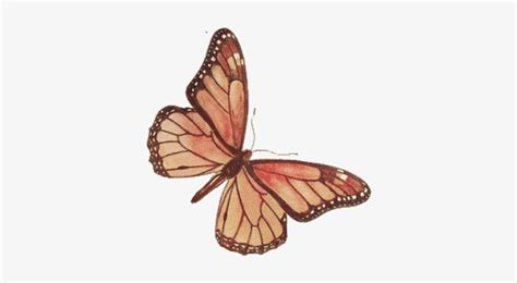 blue aesthetic butterfly png
